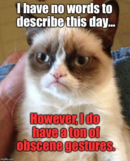 Grumpy Cat Meme | I have no words to describe this day... However, I do have a ton of obscene gestures. | image tagged in memes,grumpy cat | made w/ Imgflip meme maker