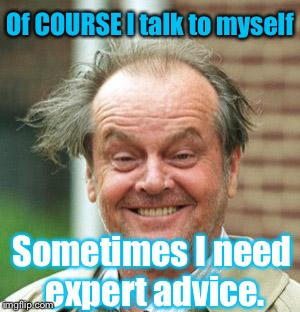 Don't YOU? |  Of COURSE I talk to myself; Sometimes I need expert advice. | image tagged in jack nicholson crazy hair,memes,too funny | made w/ Imgflip meme maker