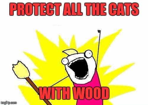 X All The Y Meme | PROTECT ALL THE CATS WITH WOOD | image tagged in memes,x all the y | made w/ Imgflip meme maker
