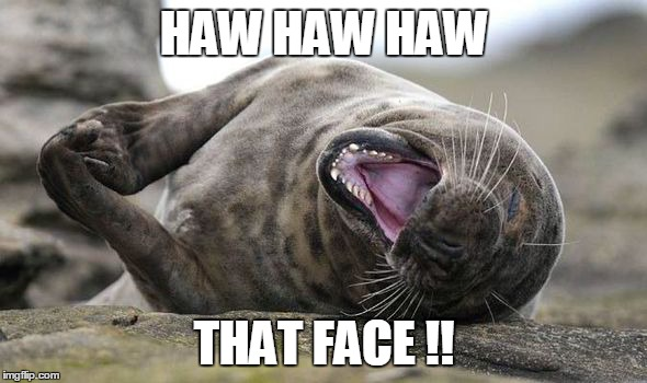 HAW HAW HAW THAT FACE !! | made w/ Imgflip meme maker