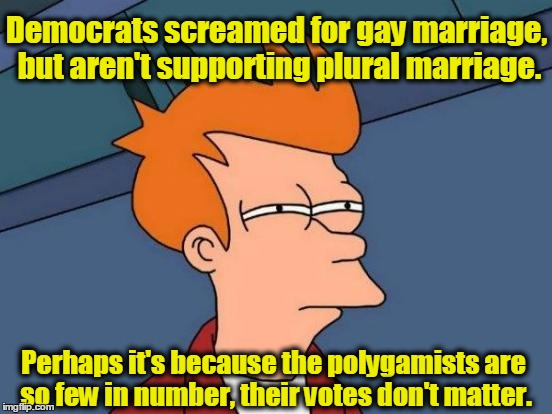 Futurama Fry | Democrats screamed for gay marriage, but aren't supporting plural marriage. Perhaps it's because the polygamists are so few in number, their | image tagged in memes,futurama fry,democrats,polygamy,marriage | made w/ Imgflip meme maker