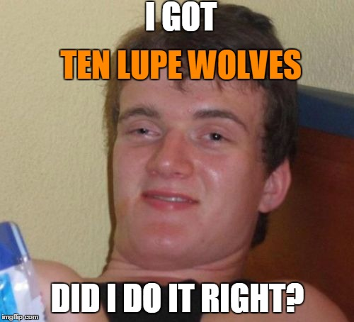 10 Guy Meme | I GOT DID I DO IT RIGHT? TEN LUPE WOLVES | image tagged in memes,10 guy | made w/ Imgflip meme maker