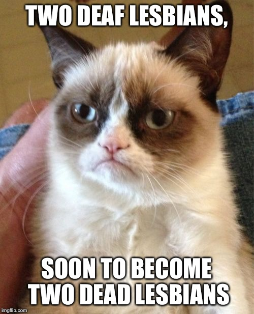 Grumpy Cat Meme | TWO DEAF LESBIANS, SOON TO BECOME TWO DEAD LESBIANS | image tagged in memes,grumpy cat | made w/ Imgflip meme maker