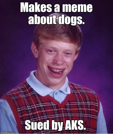 Bad Luck Brian Meme | Makes a meme about dogs. Sued by AKS. | image tagged in memes,bad luck brian | made w/ Imgflip meme maker
