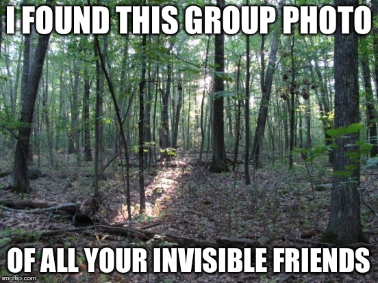 I FOUND THIS GROUP PHOTO OF ALL YOUR INVISIBLE FRIENDS | made w/ Imgflip meme maker