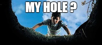 Hole in Ground | MY HOLE ? | image tagged in hole in ground | made w/ Imgflip meme maker