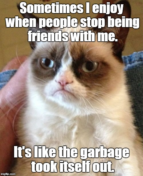 Grumpy Cat Meme | Sometimes I enjoy when people stop being friends with me. It's like the garbage took itself out. | image tagged in memes,grumpy cat | made w/ Imgflip meme maker
