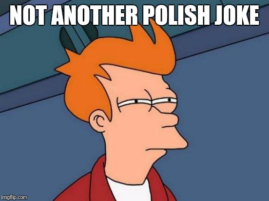 Futurama Fry Meme | NOT ANOTHER POLISH JOKE | image tagged in memes,futurama fry | made w/ Imgflip meme maker