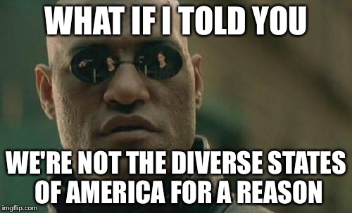 Matrix Morpheus Meme | WHAT IF I TOLD YOU WE'RE NOT THE DIVERSE STATES OF AMERICA FOR A REASON | image tagged in memes,matrix morpheus | made w/ Imgflip meme maker