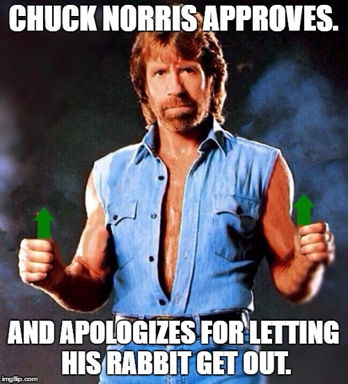 Chuck Norris Upvote | CHUCK NORRIS APPROVES. AND APOLOGIZES FOR LETTING HIS RABBIT GET OUT. | image tagged in chuck norris upvote | made w/ Imgflip meme maker
