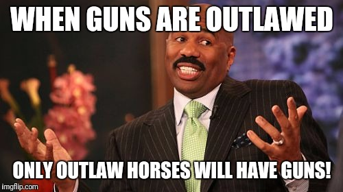 Steve Harvey Meme | WHEN GUNS ARE OUTLAWED ONLY OUTLAW HORSES WILL HAVE GUNS! | image tagged in memes,steve harvey | made w/ Imgflip meme maker