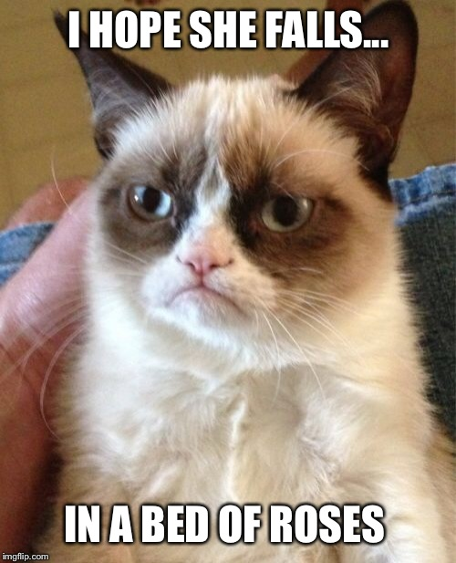 Grumpy Cat Meme | I HOPE SHE FALLS... IN A BED OF ROSES | image tagged in memes,grumpy cat | made w/ Imgflip meme maker