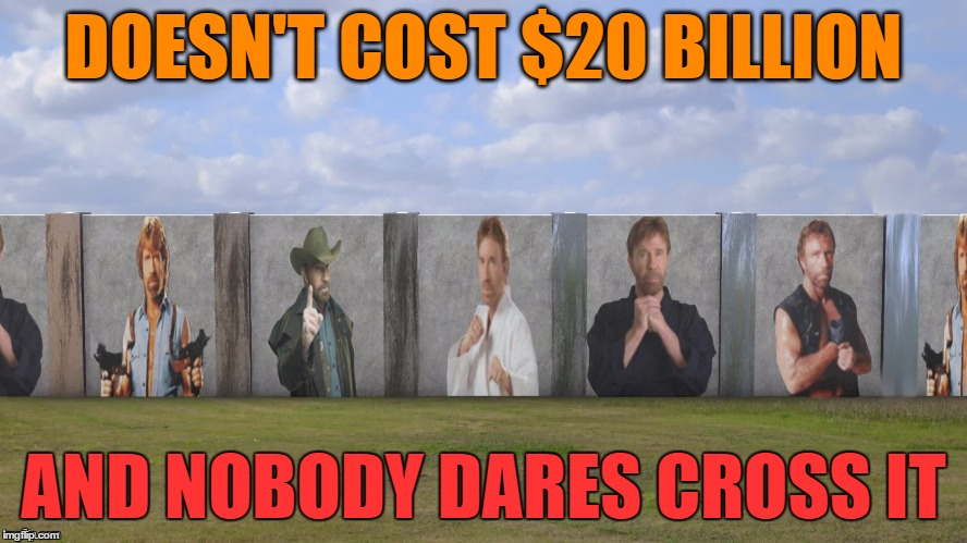 I present to you the Chuck Norris Wall.  You're welcome, Donny boy! | DOESN'T COST $20 BILLION AND NOBODY DARES CROSS IT | image tagged in memes,chuck norris,chuck norris wall | made w/ Imgflip meme maker
