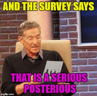 Maury Lie Detector Meme | AND THE SURVEY SAYS THAT IS A SERIOUS POSTERIOUS | image tagged in memes,maury lie detector | made w/ Imgflip meme maker