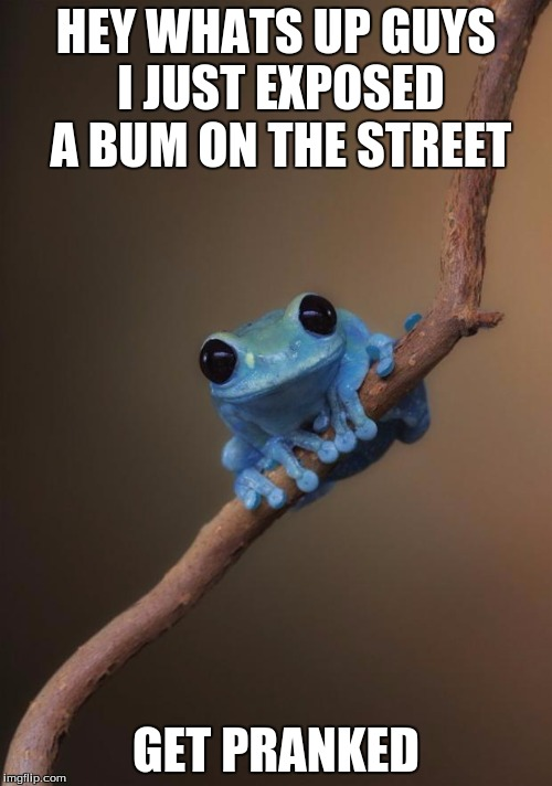 small fact frog | HEY WHATS UP GUYS I JUST EXPOSED A BUM ON THE STREET GET PRANKED | image tagged in small fact frog | made w/ Imgflip meme maker