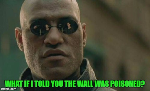 Matrix Morpheus Meme | WHAT IF I TOLD YOU THE WALL WAS POISONED? | image tagged in memes,matrix morpheus | made w/ Imgflip meme maker