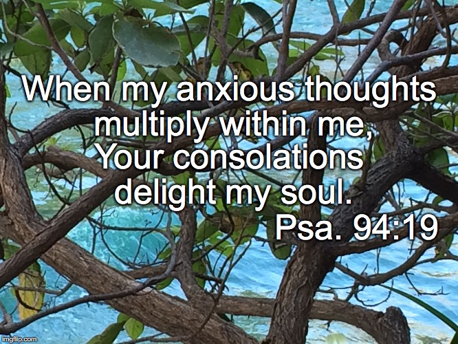 When my anxious thoughts multiply within me, Your consolations delight my soul. Psa. 94:19 | image tagged in anxious thoughts | made w/ Imgflip meme maker