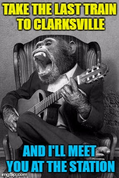 One of the original Monkees... | TAKE THE LAST TRAIN TO CLARKSVILLE AND I'LL MEET YOU AT THE STATION | image tagged in monkey birthday jam,memes,the monkees,last train to clarksville,music,animals | made w/ Imgflip meme maker