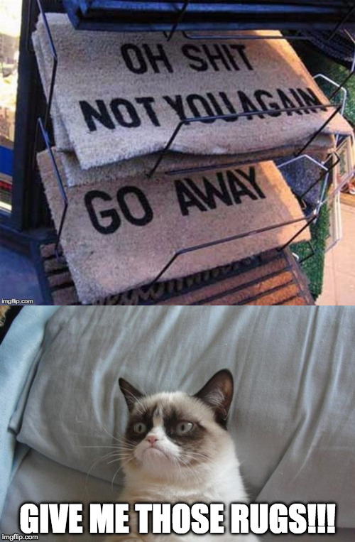 grumpy cat goes rug shopping | GIVE ME THOSE RUGS!!! | image tagged in grumpy,rug,cat,feline | made w/ Imgflip meme maker