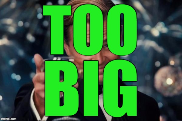 Leonardo Dicaprio Cheers Meme | TOO BIG | image tagged in memes,leonardo dicaprio cheers | made w/ Imgflip meme maker