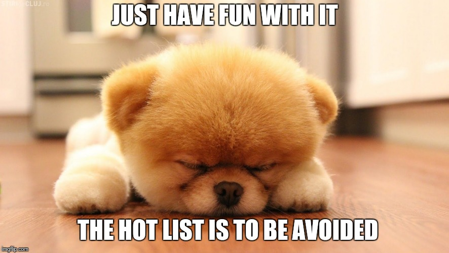 Sleeping dog | JUST HAVE FUN WITH IT THE HOT LIST IS TO BE AVOIDED | image tagged in sleeping dog | made w/ Imgflip meme maker