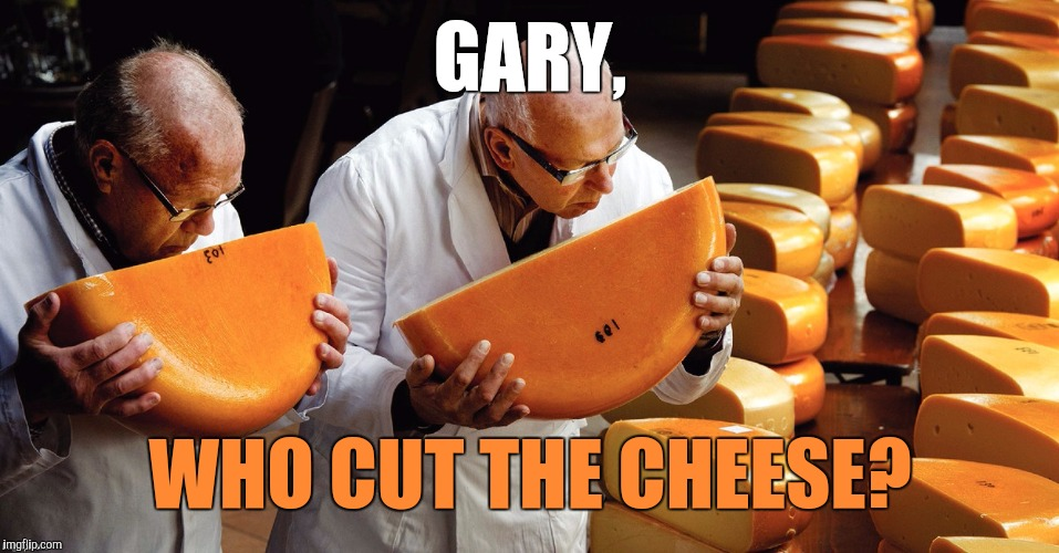 Fart inspectors?  | GARY, WHO CUT THE CHEESE? | image tagged in cheese,fart | made w/ Imgflip meme maker