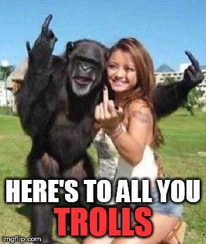 Anti Troll Week | HERE'S TO ALL YOU TROLLS | image tagged in trolls,funny | made w/ Imgflip meme maker