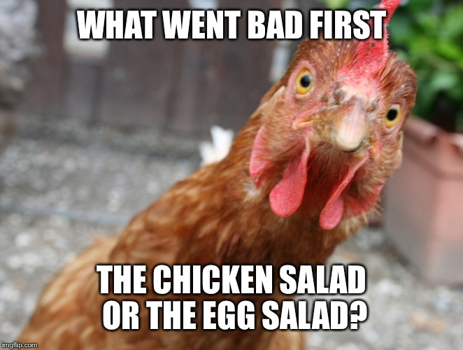 WHAT WENT BAD FIRST THE CHICKEN SALAD OR THE EGG SALAD? | made w/ Imgflip meme maker