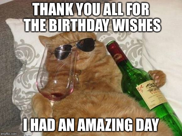 Funny Birthday Thank You Meme : Funny cat birthday imgflip