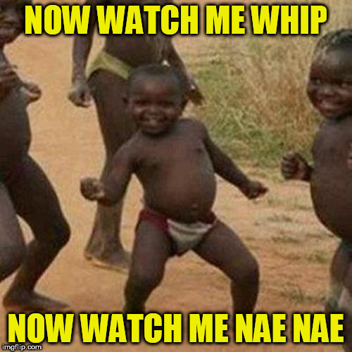 Third World Success Kid Meme | NOW WATCH ME WHIP NOW WATCH ME NAE NAE | image tagged in memes,third world success kid | made w/ Imgflip meme maker
