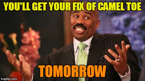 Steve Harvey Meme | YOU'LL GET YOUR FIX OF CAMEL TOE TOMORROW | image tagged in memes,steve harvey | made w/ Imgflip meme maker