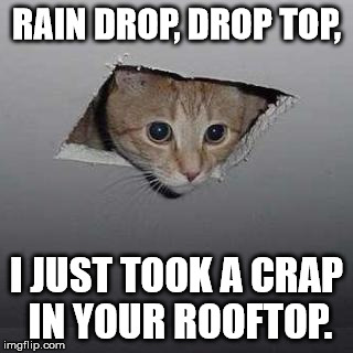 And that's why you fix the hole in your ceiling. | RAIN DROP, DROP TOP, I JUST TOOK A CRAP IN YOUR ROOFTOP. | image tagged in memes,ceiling cat,rain drop,drop top,dank memes,raycat | made w/ Imgflip meme maker