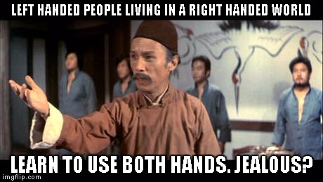 Kung Pow | LEFT HANDED PEOPLE LIVING IN A RIGHT HANDED WORLD LEARN TO USE BOTH HANDS. JEALOUS? | image tagged in kung pow | made w/ Imgflip meme maker