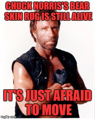 Chuck Norris  | CHUCK NORRIS'S BEAR SKIN RUG IS STILL ALIVE IT'S JUST AFRAID TO MOVE | image tagged in memes,chuck norris flex,chuck norris,lynch1979 | made w/ Imgflip meme maker