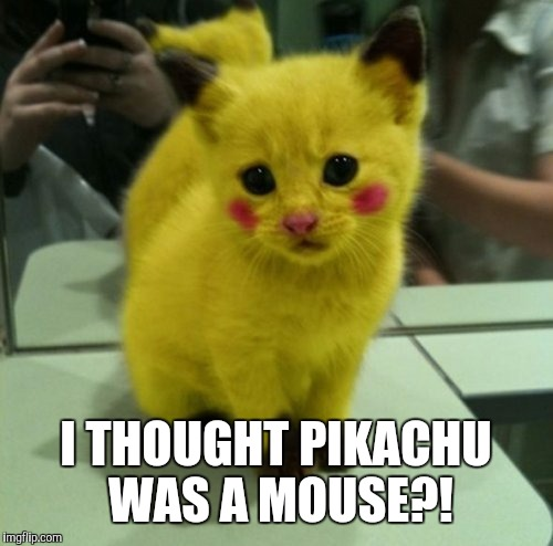 PiCATchu | I THOUGHT PIKACHU WAS A MOUSE?! | image tagged in pikachu,cat,pokemon week | made w/ Imgflip meme maker