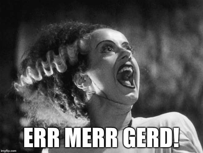The Bride of Frankenstein | ERR MERR GERD! | image tagged in the bride of frankenstein | made w/ Imgflip meme maker