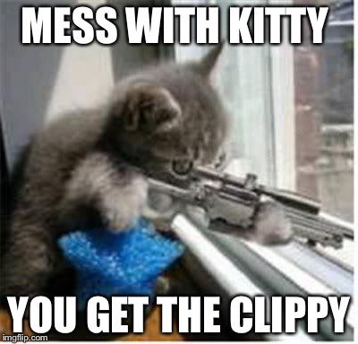 cats with guns | MESS WITH KITTY YOU GET THE CLIPPY | image tagged in cats with guns | made w/ Imgflip meme maker