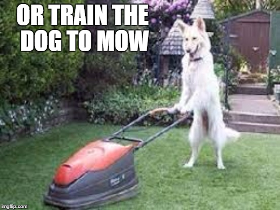 OR TRAIN THE DOG TO MOW | made w/ Imgflip meme maker