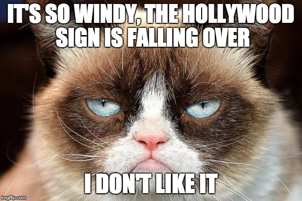 image tagged in grumpy cat imgflip