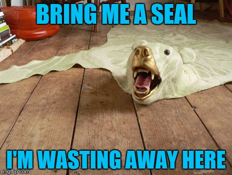 BRING ME A SEAL I'M WASTING AWAY HERE | made w/ Imgflip meme maker
