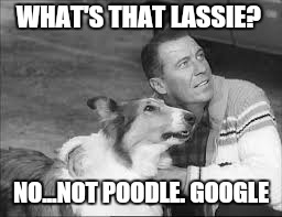 WHAT'S THAT LASSIE? NO...NOT POODLE. GOOGLE | made w/ Imgflip meme maker