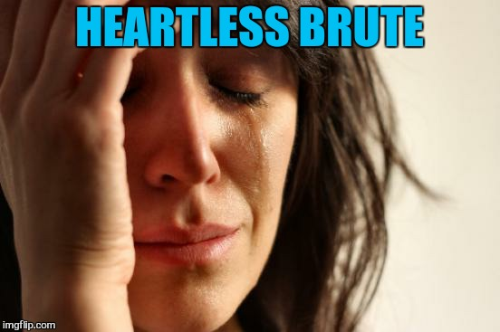 First World Problems Meme | HEARTLESS BRUTE | image tagged in memes,first world problems | made w/ Imgflip meme maker