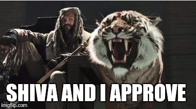SHIVA AND I APPROVE | made w/ Imgflip meme maker
