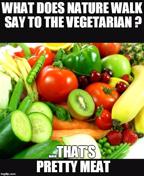 Fruits and Veggies | WHAT DOES NATURE WALK SAY TO THE VEGETARIAN ? ...THAT'S PRETTY MEAT | image tagged in fruits and veggies | made w/ Imgflip meme maker