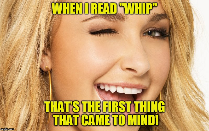 "WHEN I READ ""WHIP"" THAT'S THE FIRST THING THAT CAME TO MIND! 