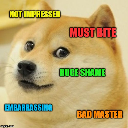 Doge Meme | NOT IMPRESSED MUST BITE HUGE SHAME EMBARRASSING BAD MASTER | image tagged in memes,doge | made w/ Imgflip meme maker
