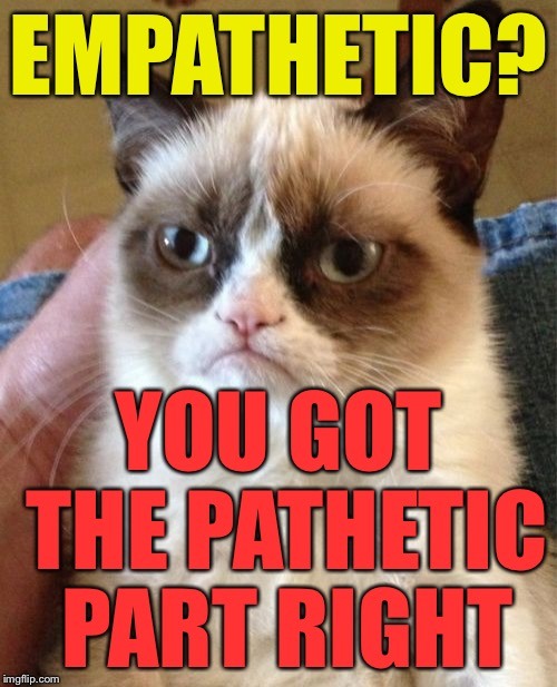 Grumpy Cat Meme | EMPATHETIC? YOU GOT THE PATHETIC PART RIGHT | image tagged in memes,grumpy cat | made w/ Imgflip meme maker