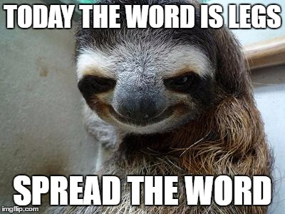 Creeper Sloth | TODAY THE WORD IS LEGS SPREAD THE WORD | image tagged in creeper sloth | made w/ Imgflip meme maker