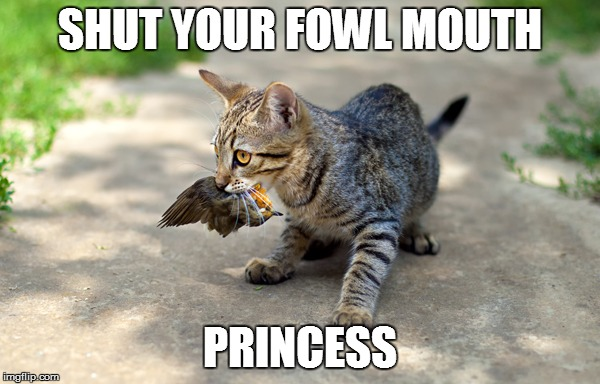 SHUT YOUR FOWL MOUTH PRINCESS | made w/ Imgflip meme maker