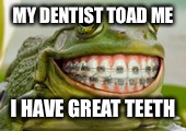 Frog Smile | MY DENTIST TOAD ME I HAVE GREAT TEETH | image tagged in frog smile | made w/ Imgflip meme maker